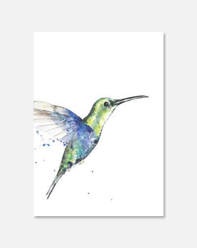 Kaart Kolibrie