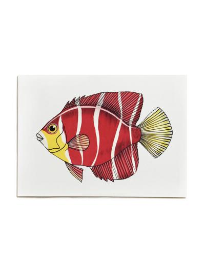 Fish on Friday-engelvis